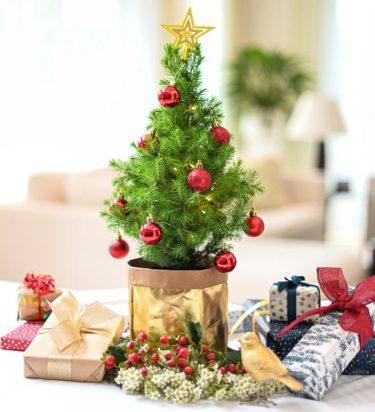 Floreat Medical Christmas